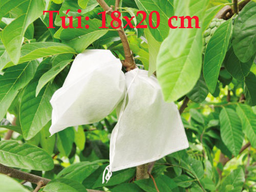 Combo 100 Túi Bao Cam, Bao Xoài, Bao Ổi, Bao Na, Mận Và Các Loại Quả Kích Cỡ Nhỏ ( 18cm x 20cm )